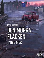 den_morka_flacken