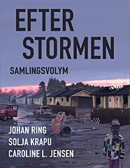 efter_stormen